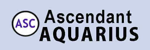 Aquarius Rising Sign